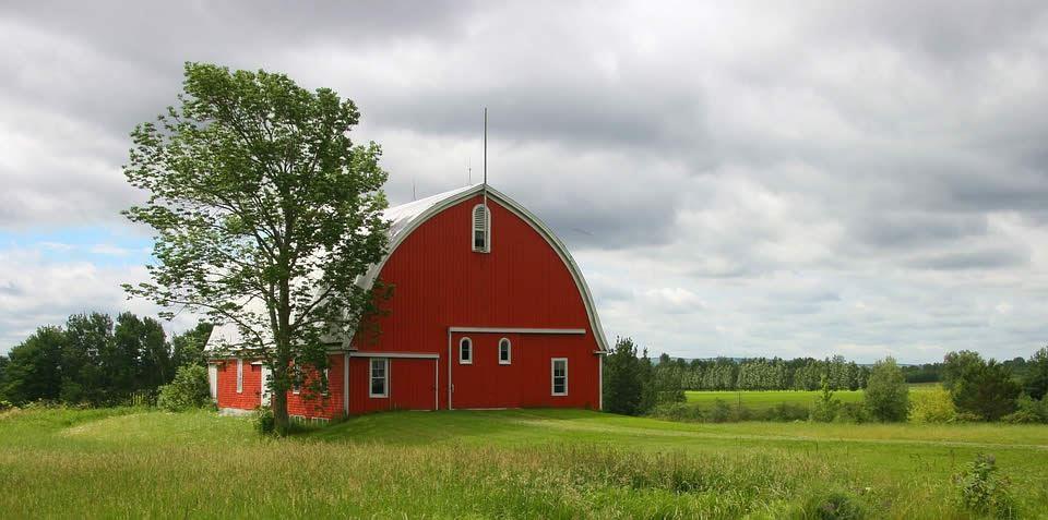 Jim Cramer Buys Farm